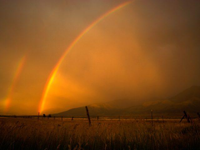 Paradise Valley Rainbows